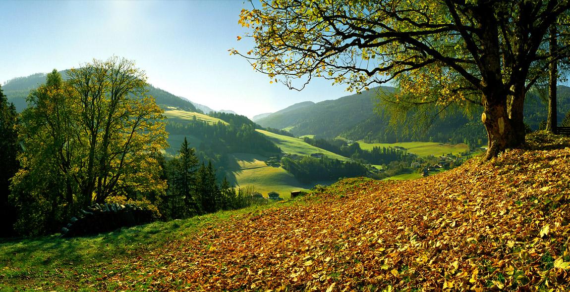 Forstau im Herbst
